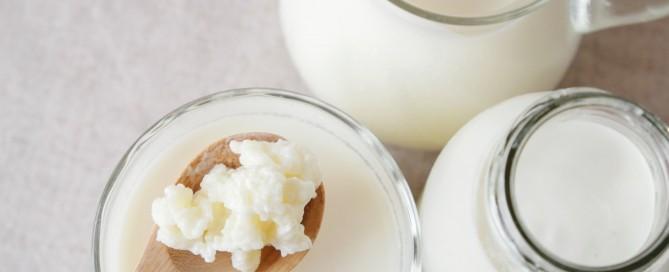 kefir de leche